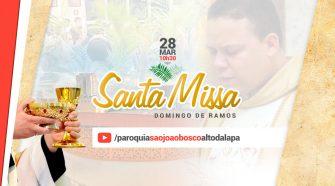 Santa Missa - Domingo de Ramos